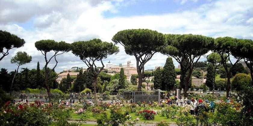 Roma Aventino Adiacenze Circo Massimo