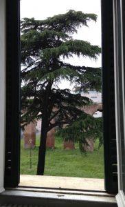 Roma_affitto_Appartamento_via_pepe_3a0e5e06-ff0f-410a-90f1-aa275fdcd841