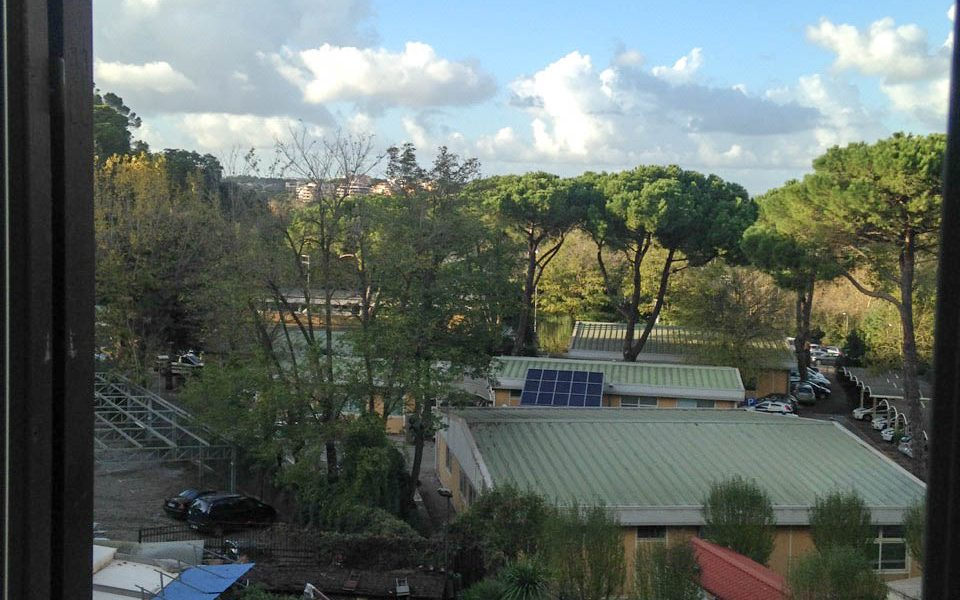 roma-appartamento-affitto-parioli-23